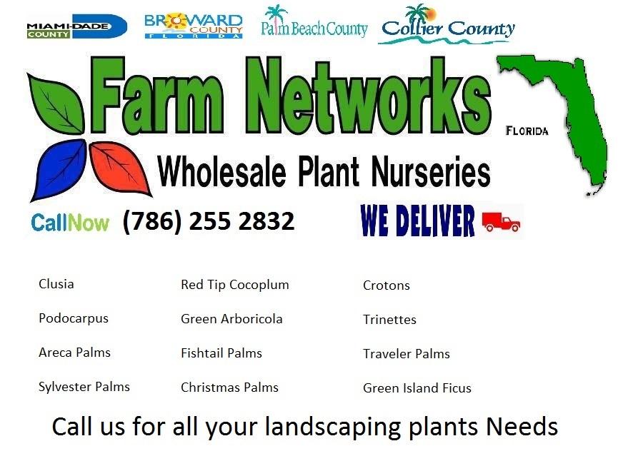 Florida Plant-Nursery